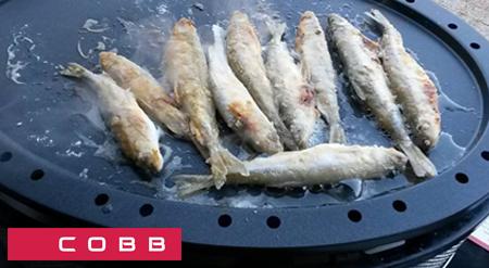 Sartén para barbacoa Cobb Supreme y pescado